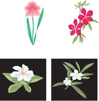 free vector Flower of Seven color 35