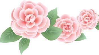 Rose Flower Vetor 54