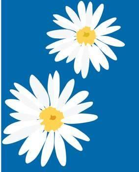 free vector Romashka daisy Flower 3
