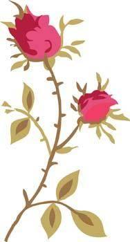 Rose Flower Vetor 29