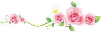 free vector Rose Flower Vetor 47