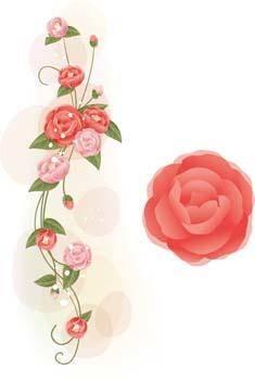 Rose Flower Vetor 38