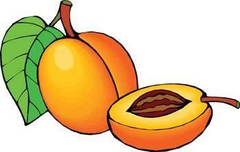free vector Peach 3