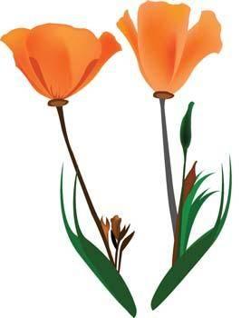 Mak Flower 3