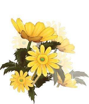 Flower of Seven color 90