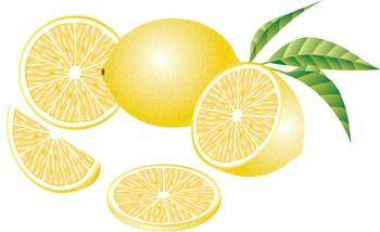 free vector Lemon 8