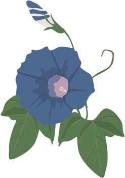 Viun Flower 3