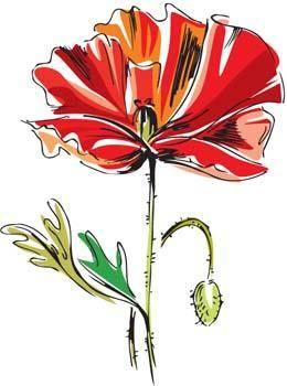 Mak Flower 1