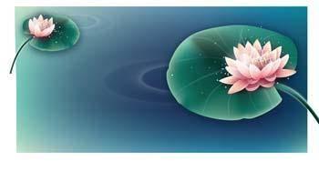 free vector Kuvshinka a water Flower 4