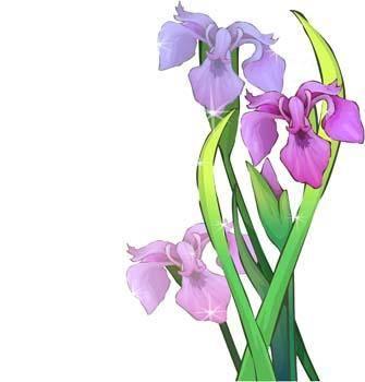 Isir Flower