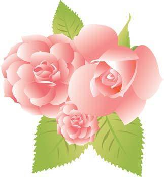 free vector Rose Flower Vetor 31