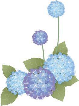 free vector Flower of Seven color 49