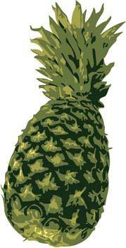 free vector Pineapple 5