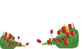 free vector Tulip Flower 10