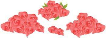 Rose Flower Vetor 14