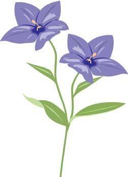 free vector Bell Flower 3