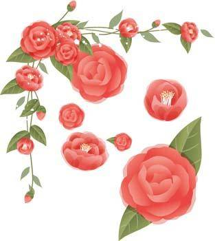 free vector Rose Flower Vetor 37