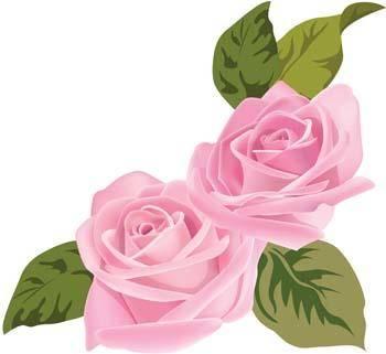 Rose Flower Vetor 52