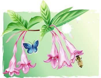Flower of Seven color 39
