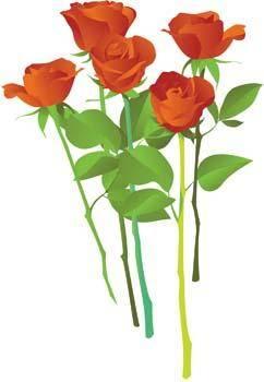 Rose Flower Vetor 5