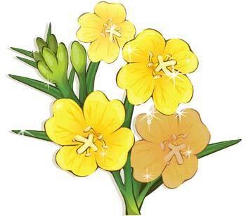 Flower of Seven color 61