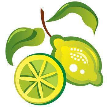 free vector Lemon 10