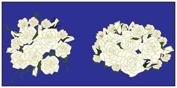 free vector Rose Flower Vetor 18
