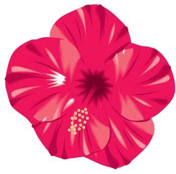 free vector Button Flower Vector 5