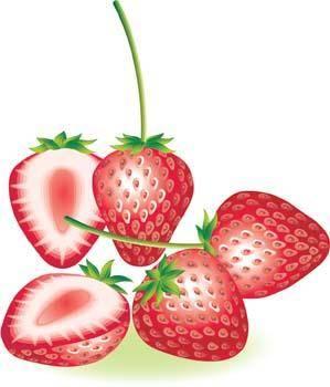free vector Strawberry 6