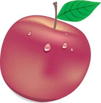 free vector Apple 15