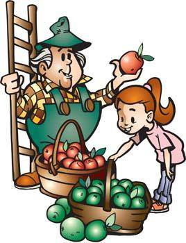 free vector Farmer with fruits 1