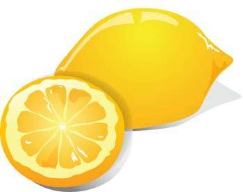 free vector Lemon 6