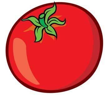 Tomato 7
