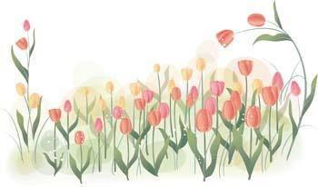 free vector Tulip Flower 23