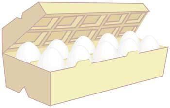 Egg Vector 1