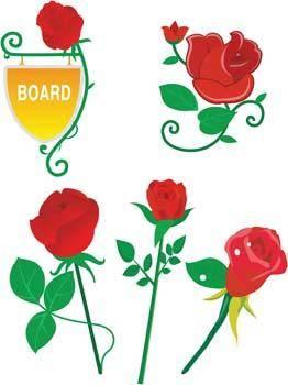 Rose Flower Vetor 7