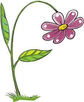 free vector Flower of Seven color 6