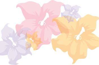 free vector Flower of Seven color 12