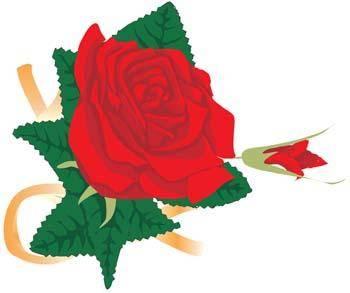 free vector Rose Flower Vetor 1