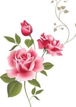 free vector Rose Flower Vetor 53