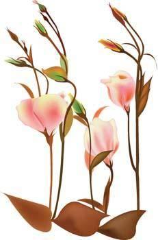 Flo Flower 5