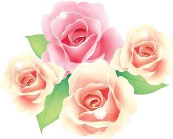 free vector Rose Flower Vetor 46