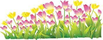 free vector Tulip Flower 16