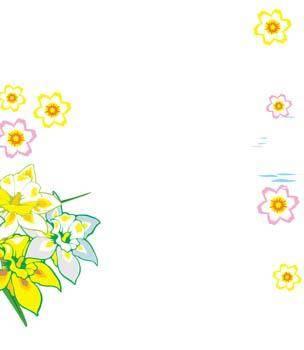 Narcis Flower 8
