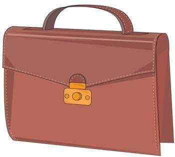 Instructor bag