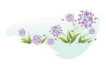 free vector Flo Flower 11