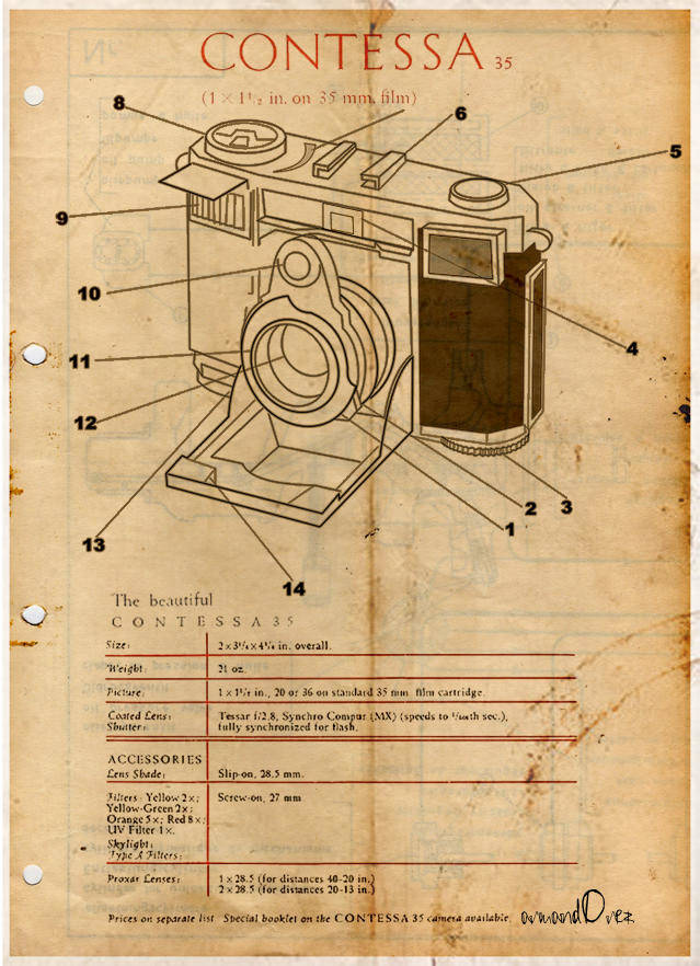 C O N T E S S A AÄ° Contesa Vector  Camera