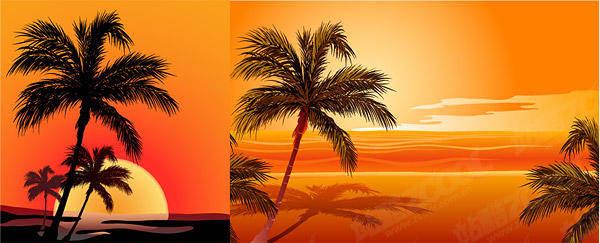 free vector Coconut Beach Sunset Shadow Vector Coconut
