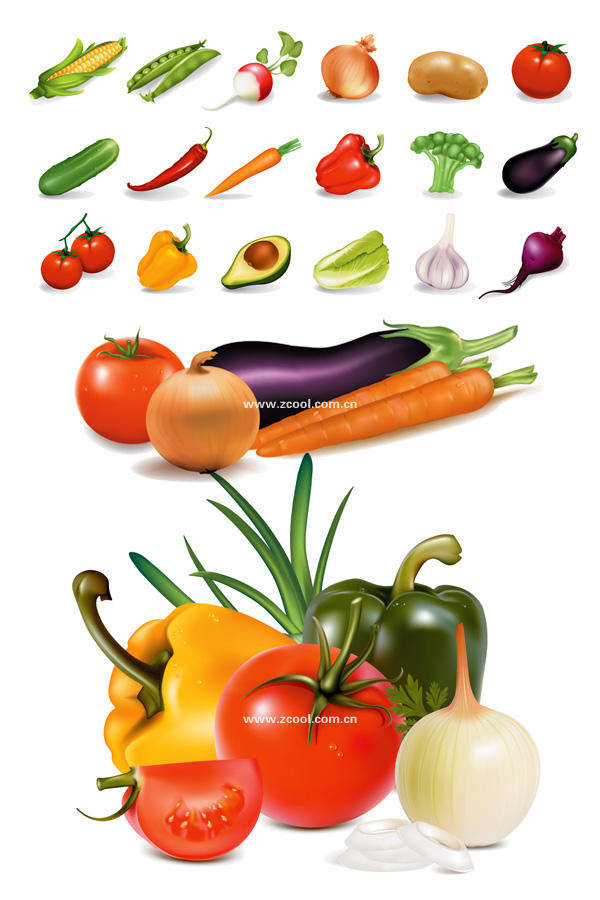 Several Common Vegetables Vector Material Several
