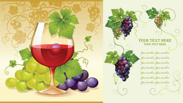 Grapes Vector Grapes Vector